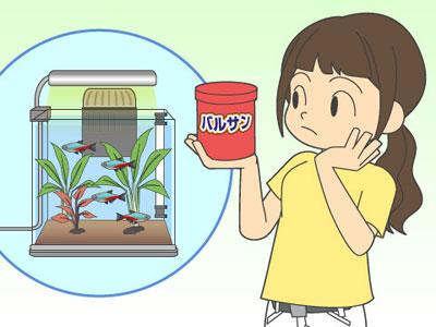 【アクアリウム】水槽部屋でバルサン!やっぱりお魚さん逝ってしまうん?