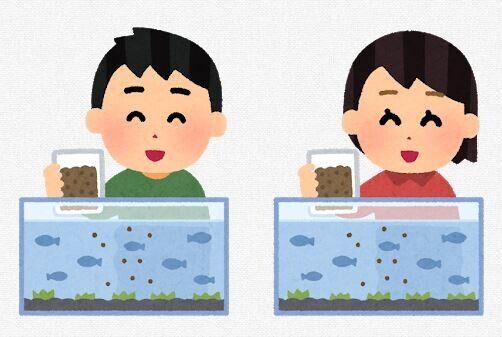 新禁止カード「魚飼ってそう」