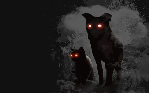 dog-4266512_960_720