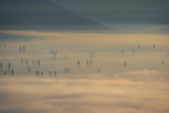 fog-4704959_960_720