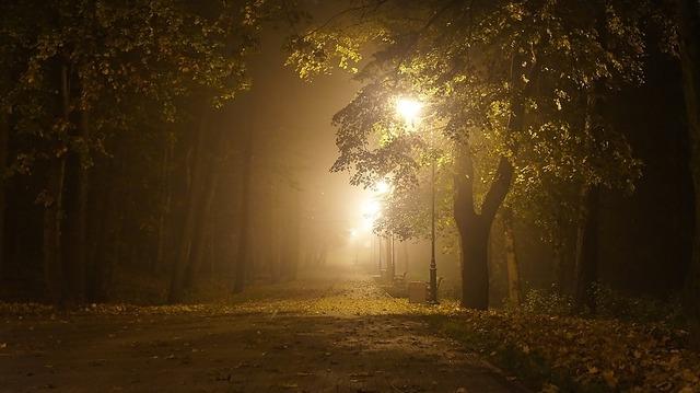 the-fog-1337113_960_720