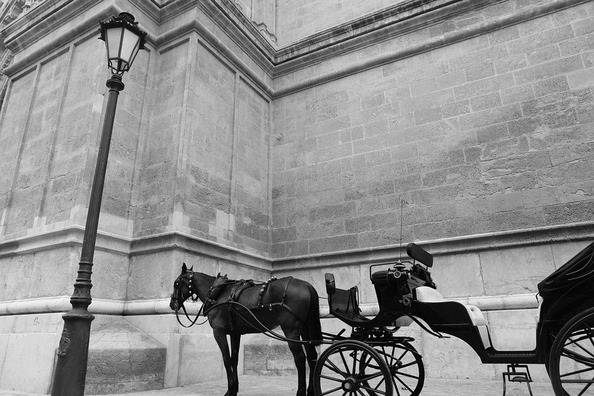 horse-carriage-406809_960_720