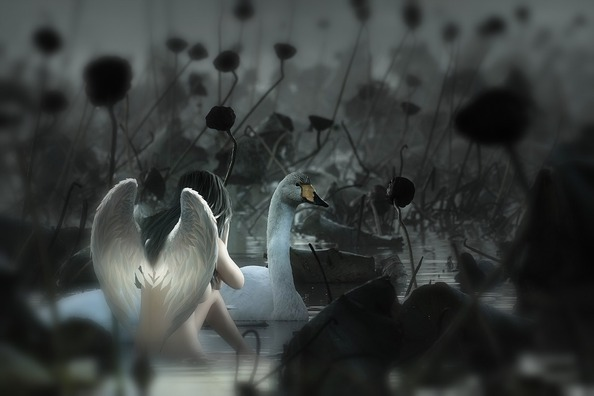 fantasy-4307855_960_720