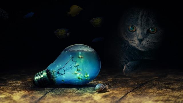 bulb-2352163_960_720