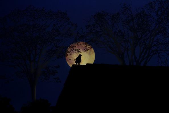 moon-3311534_960_720