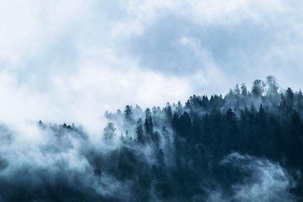 fog-1535201_960_720