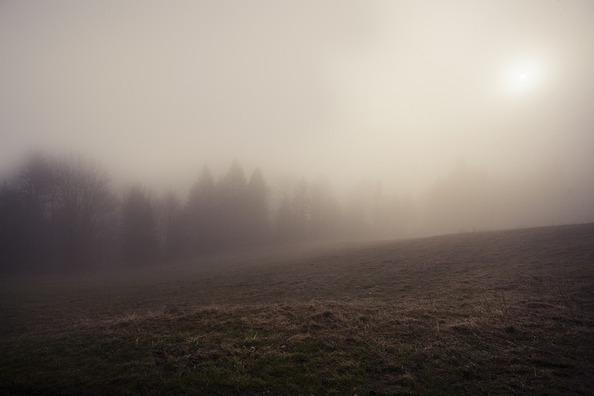 the-fog-4564660_960_720