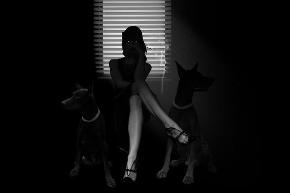 noir-3783057_960_720