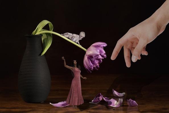 flower-1213178_960_720