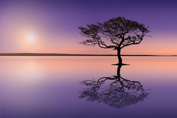 sunset-3859576_960_720