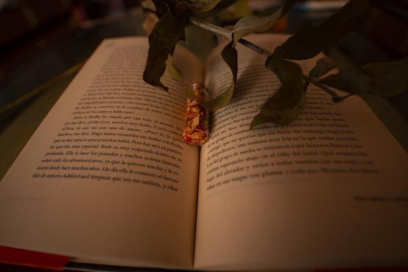 book-5028514_960_720