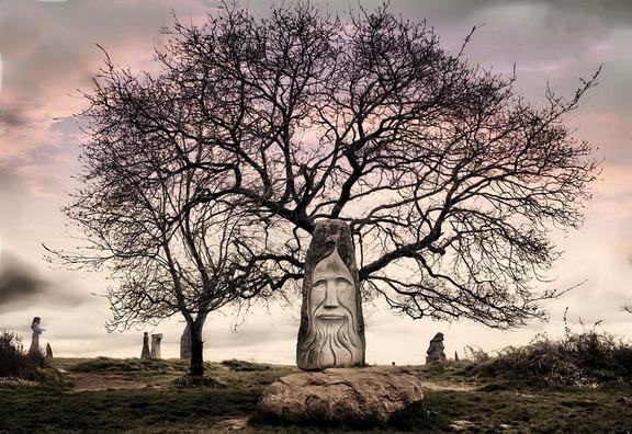 tree-4338260_960_720