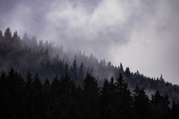 cloudy-3855175_960_720