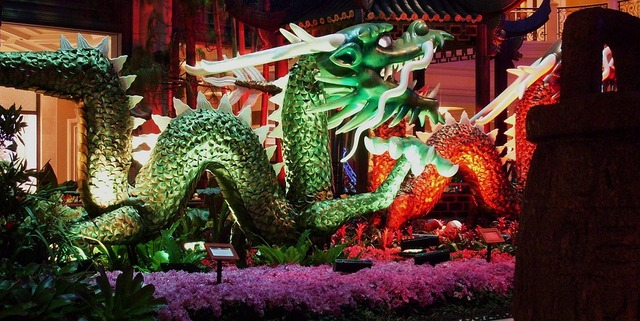 dragon-21173_960_720