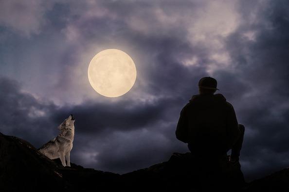 full-moon-2763329_960_720
