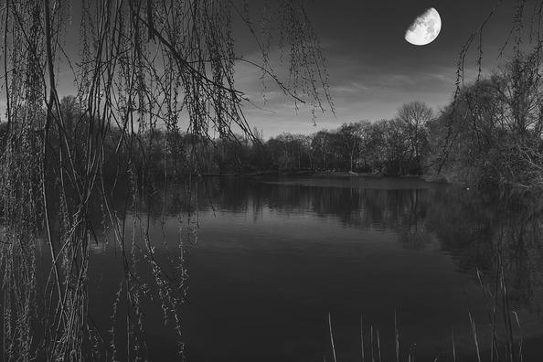 moon-5045776_960_720