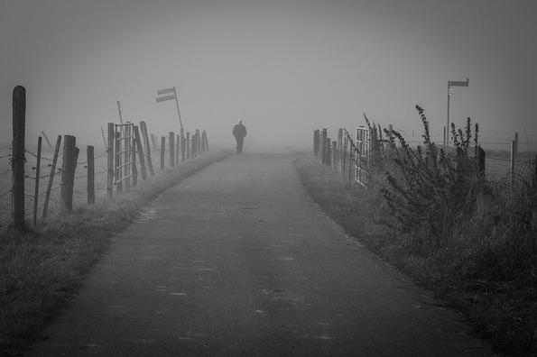 fog-4285257_960_720