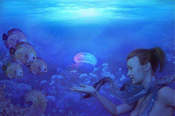 underwater-3220036_960_720