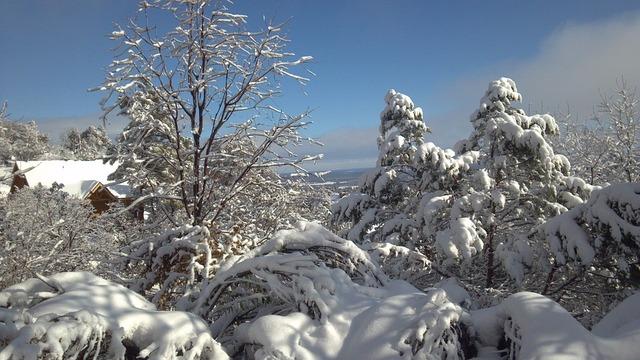 snowscape-94181_960_720