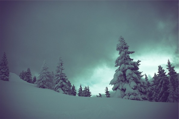 winter-698855_960_720