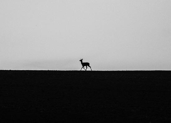 alone-2769194_960_720