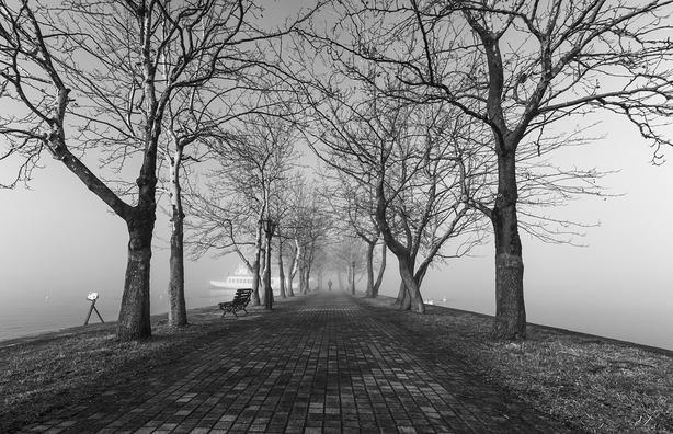 fog-4254672_960_720