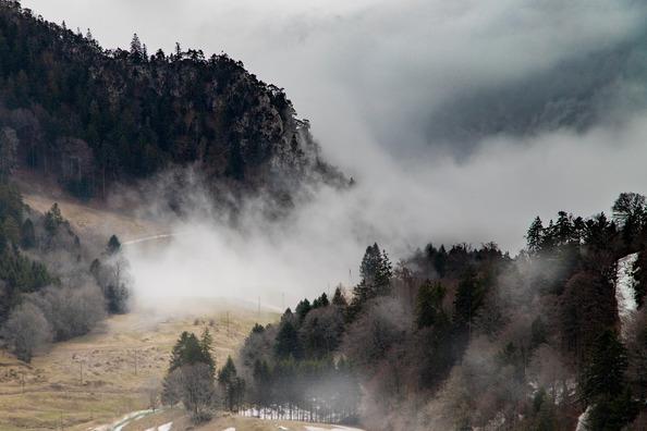 fog-4597348_1920