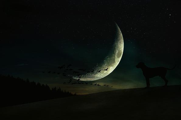 moon-4596304_960_720
