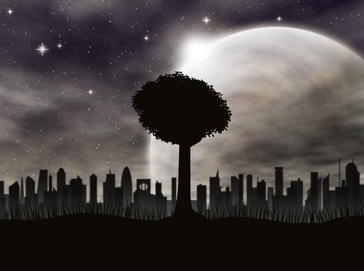 tree-2067496_960_720
