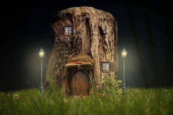 tree-stump-4517698_960_720
