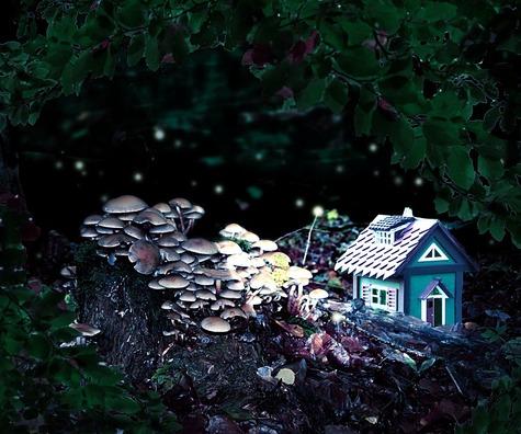 forest-spirits-2930237_960_720