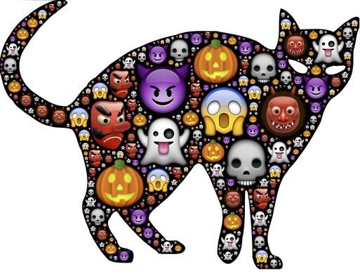 cat-962535_960_720