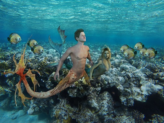 underwater-3220045_960_720