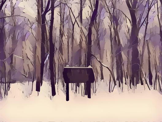 woods-3339335_960_720
