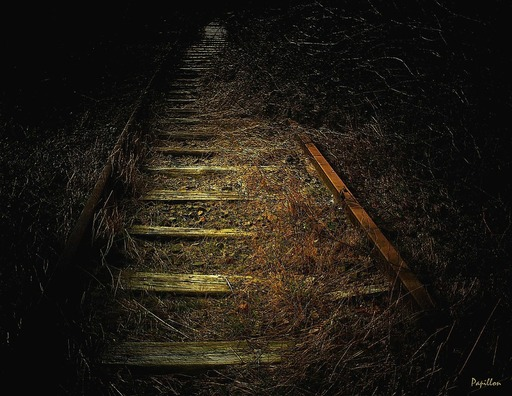 track-255508_960_720