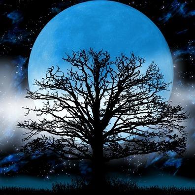 moon-2054759_960_720
