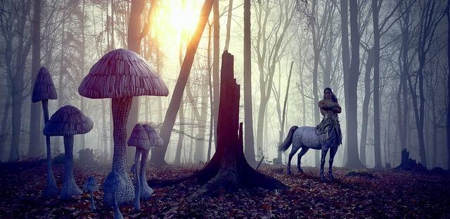 fantasy-4192511_960_720