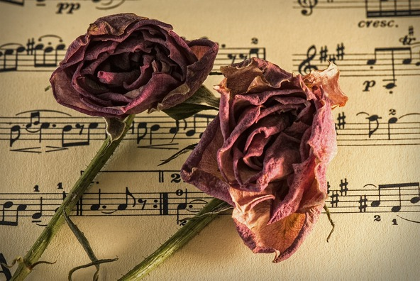 sheet-music-944796_1920