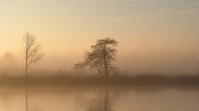 autumn-3701657_960_720