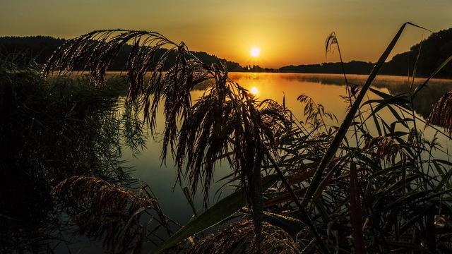 sunrise-2721150_960_720