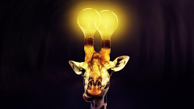 giraffe-4429114_960_720