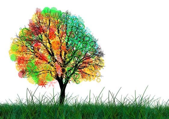 tree-68484_960_720