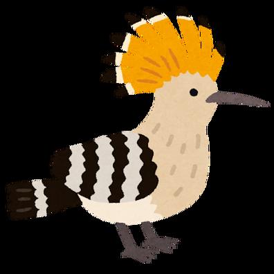 bird_yatsugashira
