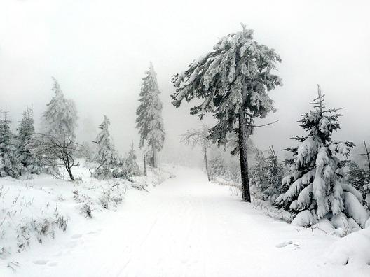 winter-599701_960_720