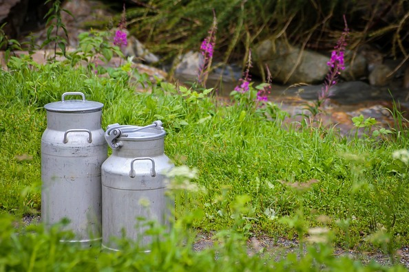 milk-cans-4585830_960_720