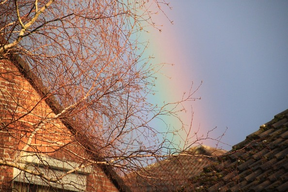 rainbow-273590_960_720