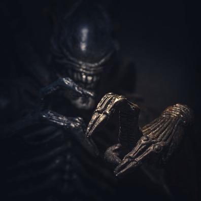 alien-4041861_960_720