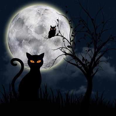 night-3743299_960_720