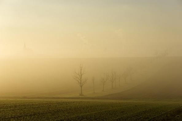 fog-3888877_960_720