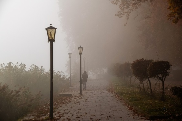 fog-4105667_960_720